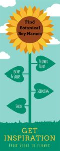 flower-plant-boy-names-infographic