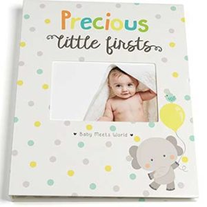 Precious Little Firsts Book