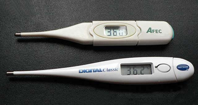 the best bbt thermometer
